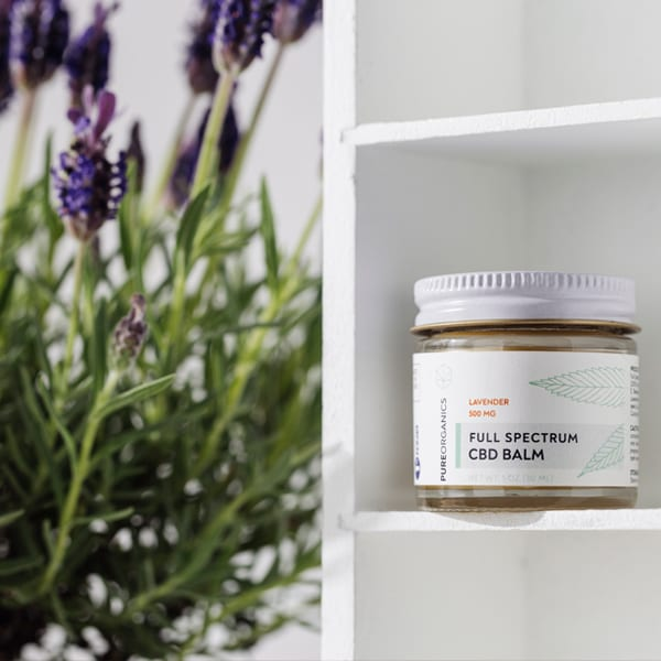 cbd balm and lavender plant